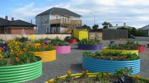 Southland Community garden project