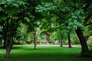 Serene-scene-in-Queens-Park